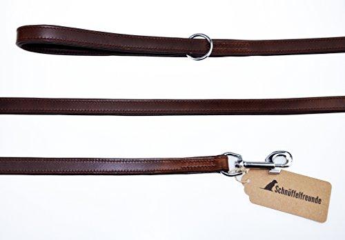 Schnüffelfreunde Hundeleine aus Leder - Führleine (180cm, Braun)