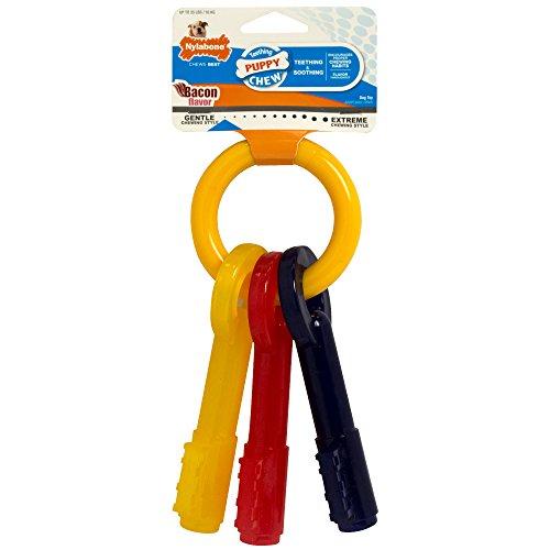 nylabone-puppy-teething-keys-large