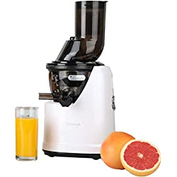 Kuvings Limited Edition Professional Cold Press Whole Slow Juicer (B1700)