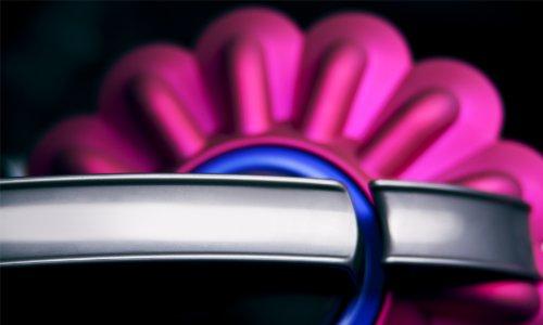 Imagen 20 de Dyson DC37 Animal Turbine