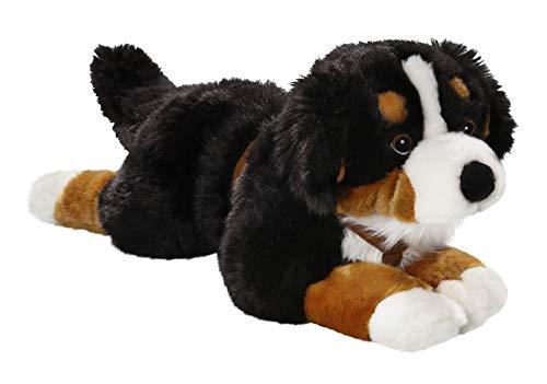 Carl Dick Berner Sennenhund mit Geschirr aus Plüsch ca. 55cm 3039
