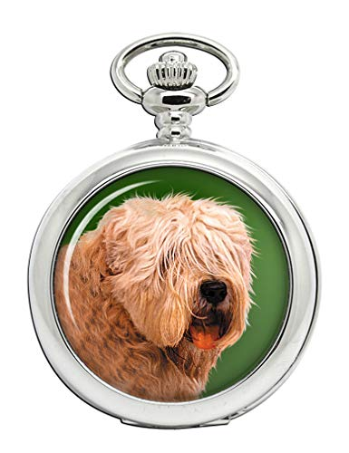 Irish Soft Coated Wheaten Terrier Full Hunter Taschenuhr -