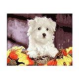 WACYDSD Puzzle 1000 Pezzi Puzzle 3D Cane Bianco Fai da Te Immagine Casa Decorazione della Parete Mestiere degli Animali