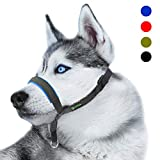 RockPet Gepolsterter Hundehalfter aus Leder - Hundehalsband-Halfter der Ziehen verhindert, Einstellbar, Maulkorb Hunde (M, Blau)