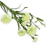 AchidistviQ, pianta Artificiale di Garofano, Decorazione per la casa, centrotavola per Matrimoni, Colore Rosso Green