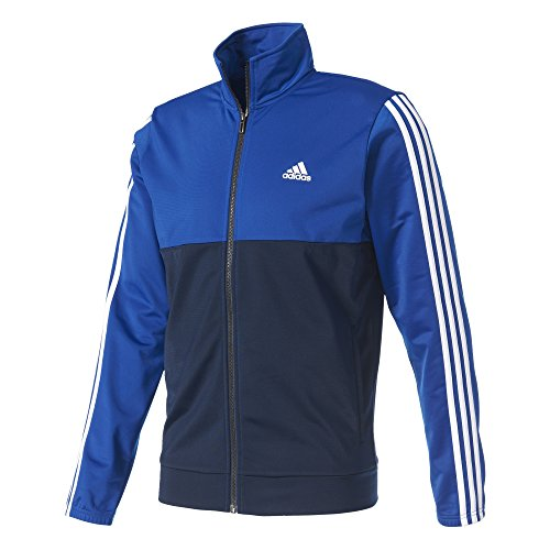 adidas Herren Back 2 Basics 3-Stripes Trainingsanzug, Collegiate Royal/Collegiate Navy/White, 8