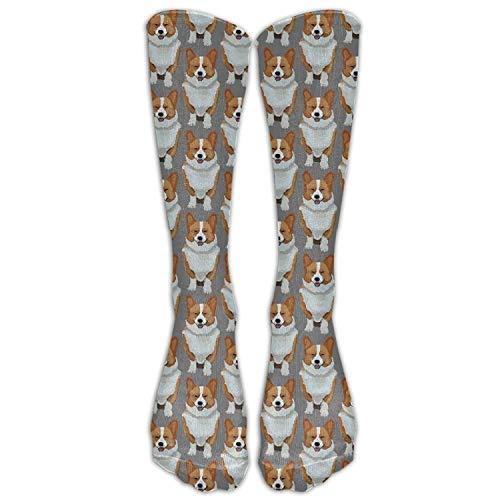 guolinadeou Men's Women's Funny Cute Corgis Puppy Long Sock Athletic Calf High Crew Soccer Socks Sports - Womens Low Rise Compression Short