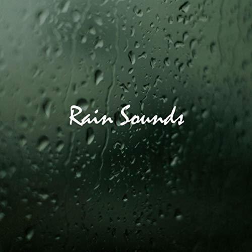 Rain Sounds Mount Olympus