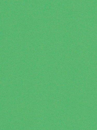 250 fogli DIN A5 verde biliardo colorato 160g/m² Ufficio di carta. Alta qualità colorata carta pizzo per copia Inkjet Laser. Prima classe per Flyers Newsletter poster fax in arrivo avvisi importanti sistemi di memo ordine di avvertimento