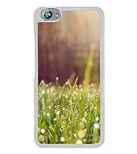 Fuson Designer Back Case Cover for Micromax Canvas Fire 4 A107 (Grass Dew Drops Sunshine Morning greenery)