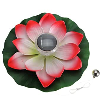 Énergie solaire LED-Multicolore-Fleur de Lotus Nelumbo Nucifera Lampe flottante pour bassin de Jardin Piscine Veilleuse