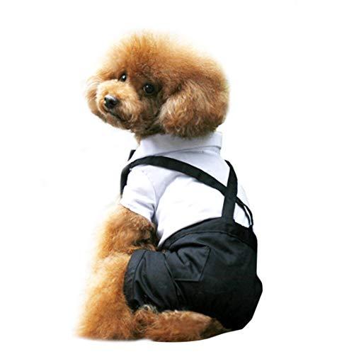 Kostüm Hai Pet - Kissherely Hund Smoking Anzug Schöne Welpen Hochzeit Outfit Hund Kostüm Pet Kleidung Mantel Overalls Heimtierbedarf (XXL)