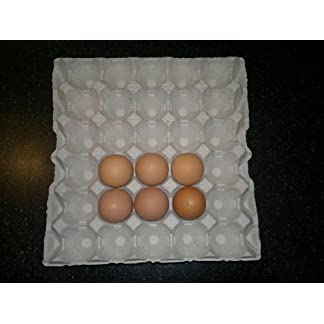 HAPPY CHICKENS NEW 10 X GREY EGG TRAYS (30 CELLS TO A TRAY) 8