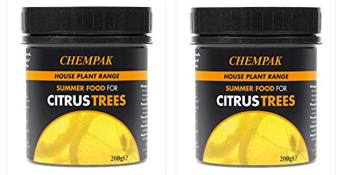 chempak-citrus-trees-summer-fertiliser-feed-food-200-gram-tub-twin-pack