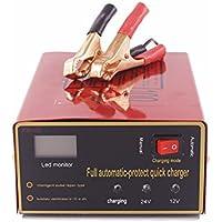 ETbotu - Cargador de batería Universal para Coche, 12 V/24 V, 140 W