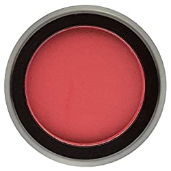 Bodyography Pure Pigment Expressions Eye Shadow, 0.14 Ounce