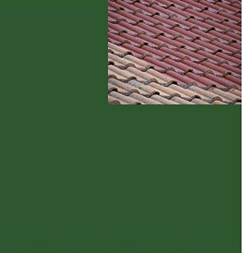 1L Ziegelfarbe Dachfarbe Dachbeschichtung Dachversiegelung in Laubgrün Dachrenovierung Metalldach Blechdach Flachdach Farbe Beschichtung Anstrich Ziegel Dach