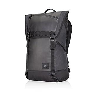 Samsonite Gregory Avenues Pierpont Hiking Backpack, 51 cm, 22 Litre, Asphalt Black