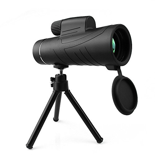 10 x 42monocular Télescope Portable HD d'observation optique Prism Telescope- avec dragonne/trépied et adaptateurs de téléphone portable universel pour observation des oiseaux, animaux sauvages de visualisation