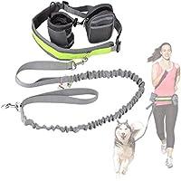 Cadrim correa para perro, correa doble, fabricada,ideal como correa de perro para correr, bicicleta, deporte, running (Gris)