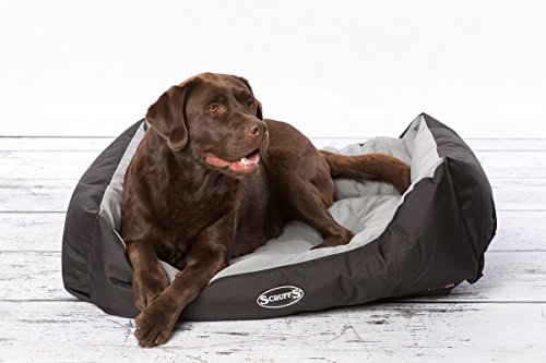 Scruffs-Expedition-Water-Resistant-Dog-Bed-Large-75-x-60-cm-Lime