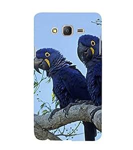 Fuson Designer Back Case Cover for Samsung Galaxy On5 Pro (2015) :: Samsung Galaxy On 5 Pro (2015) (parrots Love birds Blue Colour Love Birds Beautiful Lovely)