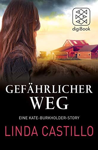 Gefährlicher Weg: Eine Kate-Burkholder-Story