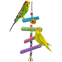 Sage Square Bird Playful Cage Accessories (Bird Hanging Color)