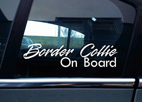 border-collie-on-board-perro-coche-vinilo-adhesivo
