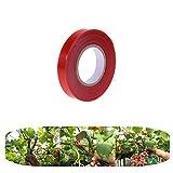 A Privilege Garten Pflanze Band, Pflanze Tape, Veredelungsband, Kunststoffband Bindezange, Bindegarn Drehbinder Bonsaiwerkzeug für Garten Trauben Tomaten (Rot)