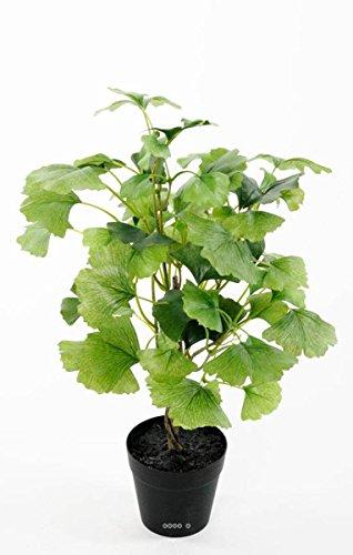 Artificielles Ginkgo Biloba Kunstpflanze Blumentopf Höhe 45 cm