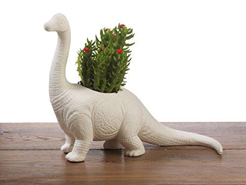 Cache-Pot Dinosaure - Cadeau Maestro