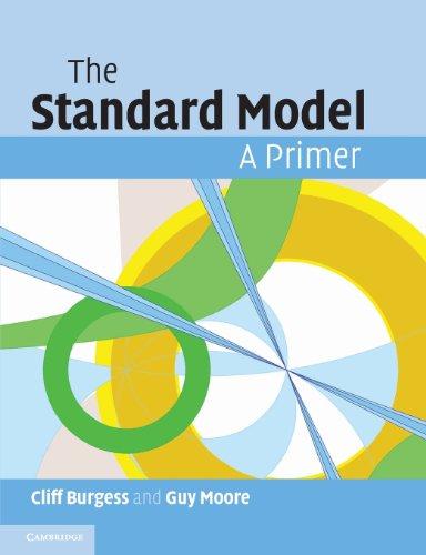The Standard Model Paperback