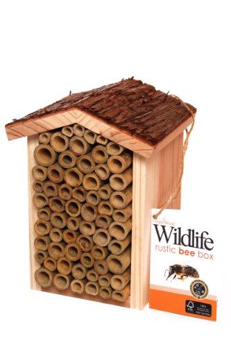 Chapelwood Bee Box Test