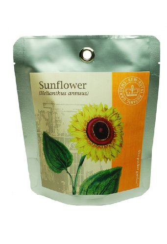 canova garden kew grow - kit per coltivare il girasole
