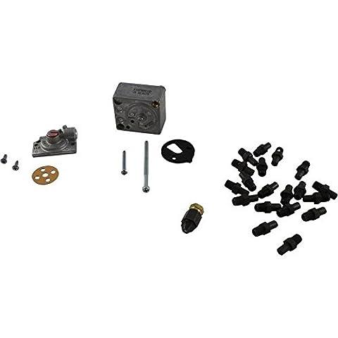 Raypak 004690B Gaz naturel pour Kit de conversion de propane