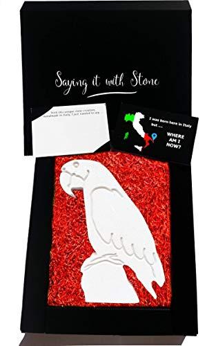 Papagei aus Stein - Symbol der Mitgefühl - Handgemacht in Italien - Box und Nachrichtenkarte enthalten - Geschenkidee Geburtstag Jahrestag Hochzeitstag Hochzeit (Schwester Statuen)