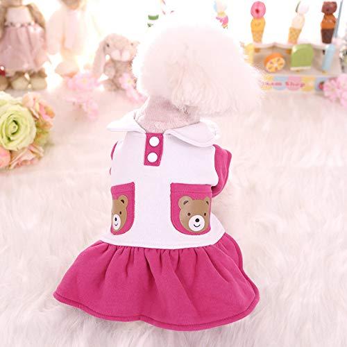 ZFFLYH Haustier Hund Kostüm, Bär Puppe Kragen Rock, Teddy Yorkshire Hund Kleidung Dekoration Für Kleine Hunde Pet - Bär Kostüm Für Hunde