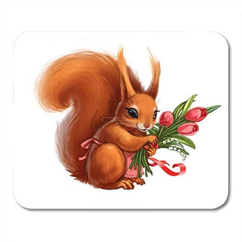 Cojín ratón Ardilla roja Divertida Delantal Ramo