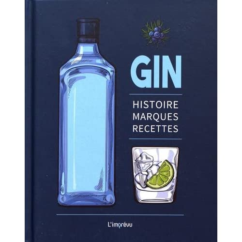 Gin : Histoire, marques, recettes