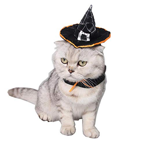 (Cathy02Marshall Pet Supplies Dog Hat Holiday Hair Dress Cool Cat Hat Bib Teddy Magic Witch Cat Hat)