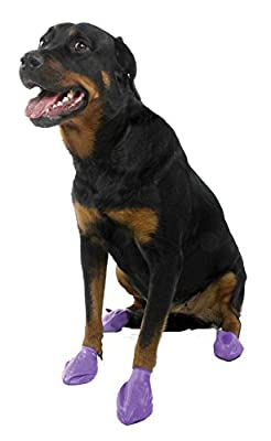 Large Pawz Durable All Weather Dog Boots (12 Boots) from Pawz LLC