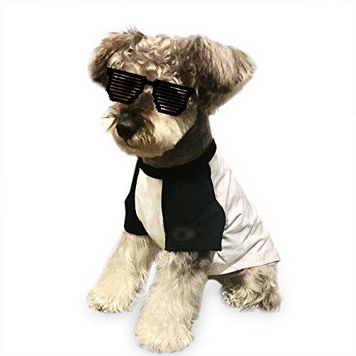 Dende Fashion Pet Hund T-Shirts Weste Beliebtes Muster Haustier Kleidung Hund Katze Puppy Sommer Baumwolle Kleidung Raglan Ärmel/Bee Muster/Sport Style, L -