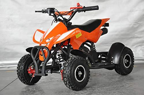 MINI QUAD 49CC ATV013 RAPTOR/miniquad
