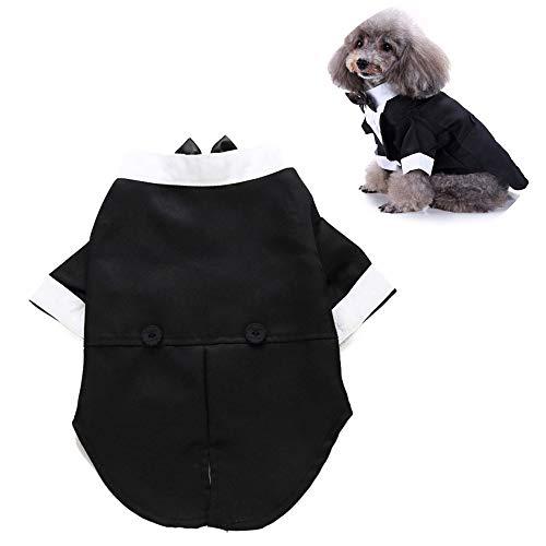 JLCYYSS Hund Shirt Welpen Haustier Kleine Hundekleidung, Stilvolle Anzug Fliege Kostüm, Hochzeit Hemd Formale Smoking Mit Schwarzer Krawatte, Hund Prinz Hochzeit Fliege ()
