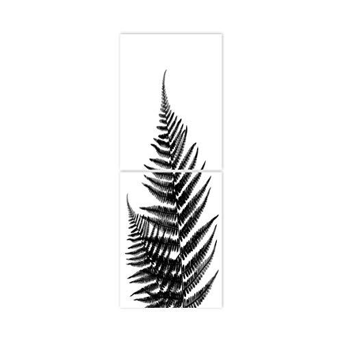 Boubouki - Wasserabweisende Fliesenaufkleber für Bad und Küche - Farn Poster - 15x20cm, Transparent -