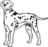 Indigos WG10217-70 Wandtattoo w217 Dalmatiner Hund Dog Wandaufkleber 80 x 80 cm, Schwarz