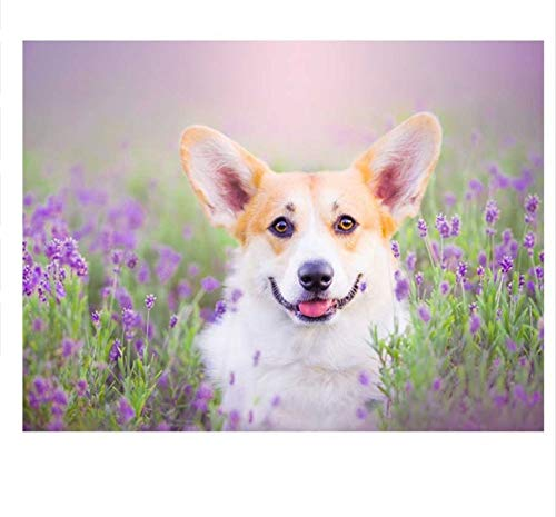 Diy Pet Photo Custome Diamond Embroidery Welsh Corgi Dog 5D Diamond Painting Cross Stitch 5D Round Diamond Mosaic Needlework-45x60cm