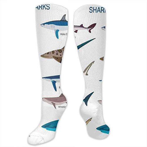 Unisex Highly Elastic Comfortable Knee High Length Tube Socks,Types Of Sharks Bronze Whaler Piked Dogfish Whlae Shark Sea Maritime Design Nautical Theme,Compression Socks Boost Stamina,Multicolor Bronze Womens Snowboard Boots