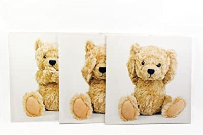 Set With 3 50 X 50 Teddy Bear Canvas produced by Carousel Home - quick delivery from UK.